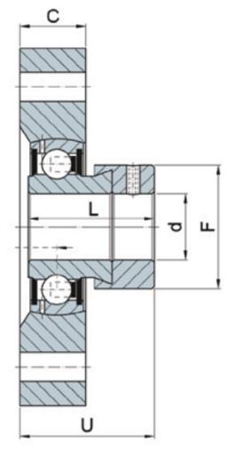Spannlager und Gehäuseeinheiten rostfrei, Zweiloch Flanschlager Gehäuseeinheit, Kunststoff